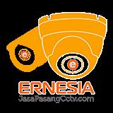 new logo ernesia